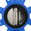 Lug Type Through Shaft with Pin Butterfly Valve