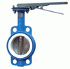 4′′ PTFE Lined Wafer Butterfly Valve